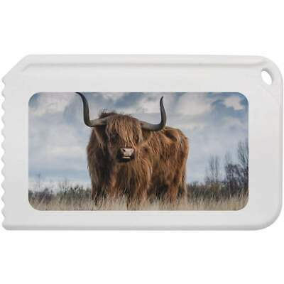 'Highland Cow' Plastic Ice Scraper (IC00005490)