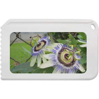 'Passion Flowers' Plastic Ice Scraper (IC00004644)