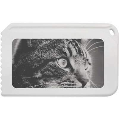 'Tabby Cat' Plastic Ice Scraper (IC00007263)