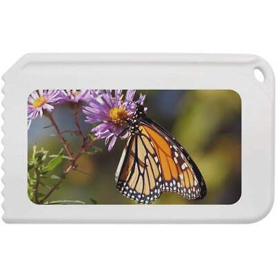 'Monarch Butterfly' Plastic Ice Scraper (IC00004459)