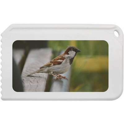 'House Sparrow' Plastic Ice Scraper (IC00005703)