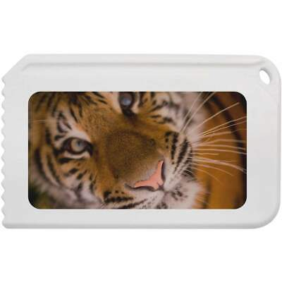 'Tiger Face' Plastic Ice Scraper (IC00005216)