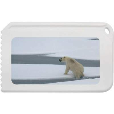 'Polar Bear' Plastic Ice Scraper (IC00008058)