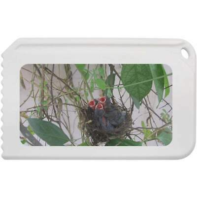 'Baby Birds' Plastic Ice Scraper (IC00006437)