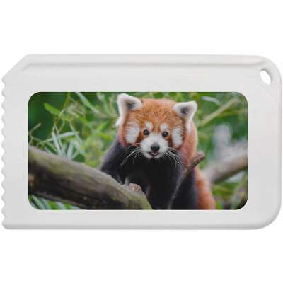 'Red Panda' Plastic Ice Scraper (IC00006111)