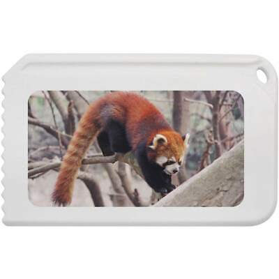 'Red Panda' Plastic Ice Scraper (IC00008141)