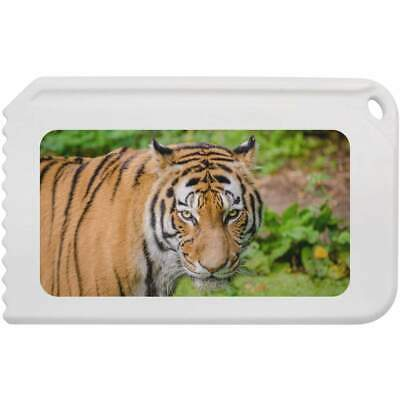 'Tiger' Plastic Ice Scraper (IC00006587)