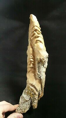 HAND CARVED  whimsical two wood spirit wall hanging  carved from 100 year bark