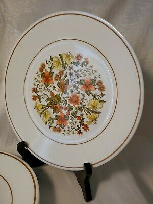 6 Corelle Corning Indian Summer  Luncheon Plates