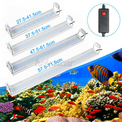 20000k Bianco-ACQUARIO 3w High Power LED 10000k 3 Watt HI POWER LED WHITE