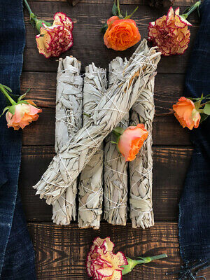 """Lot 2 XLarge White Sage Smudge Stick 9"""" Jumbo (House Cleansing Energy Clearing)"""