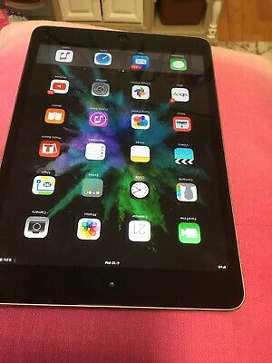 Apple iPad mini 1st Gen. 16GB, Wi-Fi Space Gray Barely Used With Bundle