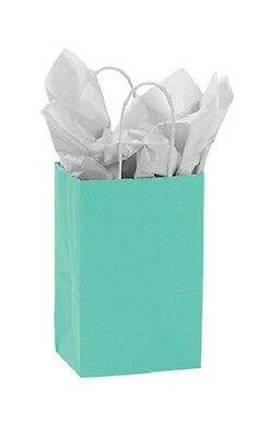 "Paper Shopping Bags 100 Turquoise Blue Merchandise (Rose) 5 ¼"" x 3 ½"" x 8 ½"""
