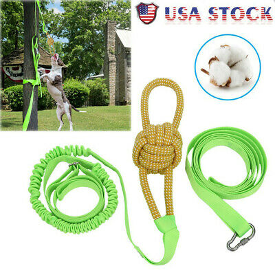 Outdoor Hanging Bungee Rope Tug Of War Interactive Dog Toy For Medium Or Large