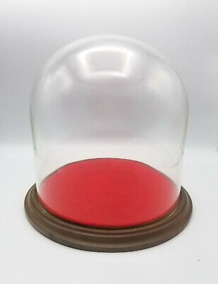 Vintage Round Glass Dome Globe Display Case.