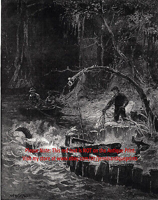 Alligator Hunting Trapping in Florida, Large 1880s Antique Print & Article