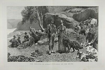 DOG Flat-Coated Retriever Hunting Glorious Twelfth, Huge 1880s Antique Print