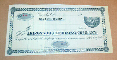 Arizona Butte Mining Company ca1880s antique stock certificate - Mohave