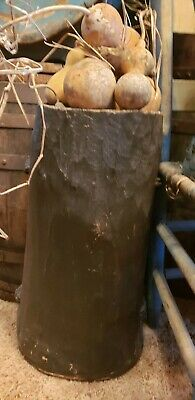 Early Primitive Hornbeam Storage Bucket