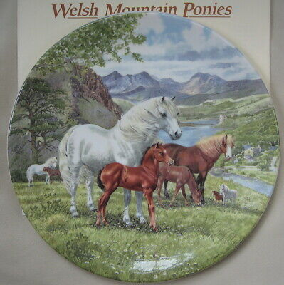 Britain's Wild Ponies Collectible Plates - Welsh