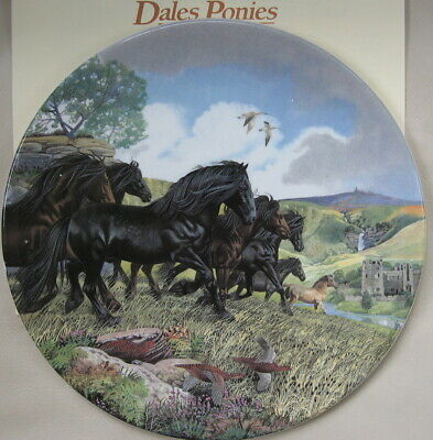 Britain's Wild Ponies Collectible Plates - Dales