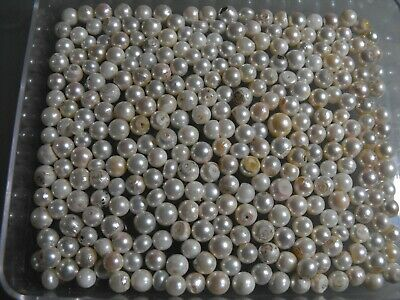 LOT OF NATURAL CULTURED PEARLS   300pc VINTAGE LOT