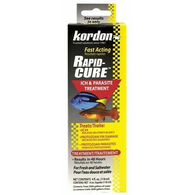 Kordon Rapid Cure (4oz)