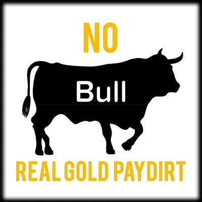 No Bull 5oz Gold Paydirt Concentrate. Guaranteed Gold Added. Gold Nuggets/flakes