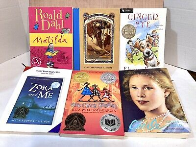 Lot of 6 Children's Chapter Books for Girls Youth Early Reader Young Adult