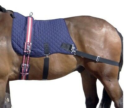 SPECIAL OFFER! Equine Core Trainer By Thermatex...Only £99!! FREE POSTAGE!!