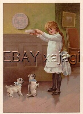 DOG Pug Puppies Begging for Food from Little Girl Antique Color Chromolith Print