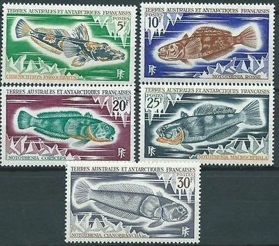 Timbre Terres Australes T.a.a.f. Neuf Serie Poisson N° 34/38 ** Cote 26 €