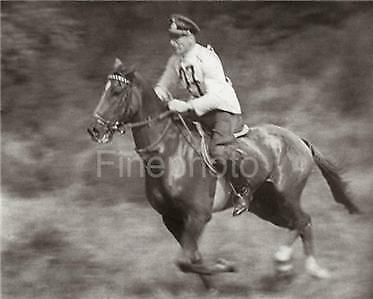 1936 OLYMPICS EQUESTRIAN Horse Art By LENI RIEFENSTAHL
