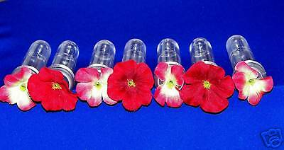 7  Hummingbird Feeder Replacement Tubes