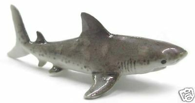 R160 Northern Rose Miniature -  Great White Shark Baby