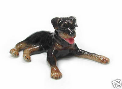 R150 - Northern Rose Miniature - Rottweiler Pup