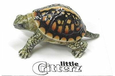 "LC308 - Little Critterz  - Box Turtle ""Dom"" (Buy 5 get 6th free!)"