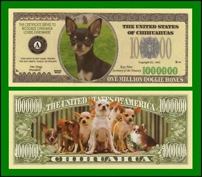 25 Factory Fresh Chihuahua Dog Million Dollar Bills
