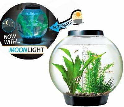 Reef One Black Baby Biorb Moonlight Led Fish Aquarium