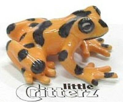 little Critterz Panamanian Golden Frog -LC315 (Buy 5 get 6th free!)