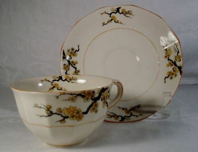 Myott Blossom 1916 Cup and Saucer