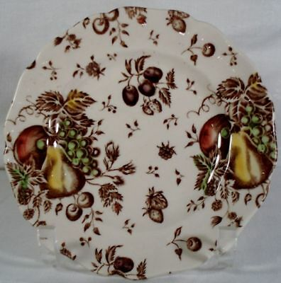 Johnson Brothers Autumns Delight Bread & Butter Plate