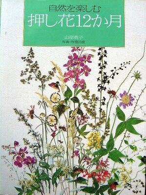 Pressed Flowers 12 months /Japanese Craft Book