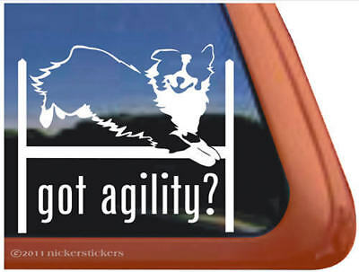 Got Agility? Australian Shepherd Dog Decal Sticker