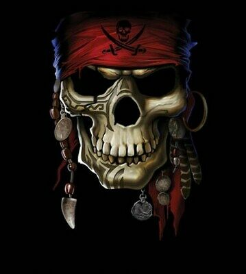 SKULL PIRATE POSTER - Pirates of the Caribbean - 16x20