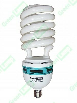 10 x 65w Photography Balanced Daylight 5500K B22 Bulb B