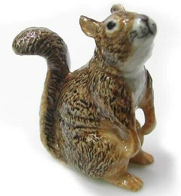 R051 Northern Rose Miniature  - Red Squirrel