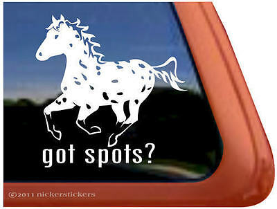 Got Spots? Leopard Appaloosa Horse Trailer Decal Sticker