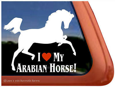 I LOVE MY ARABIAN HORSE Trailer Window Decal Sticker