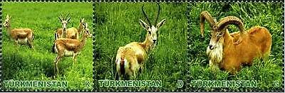 Turkmenistan - 2009 - Animals, 3v se-ten